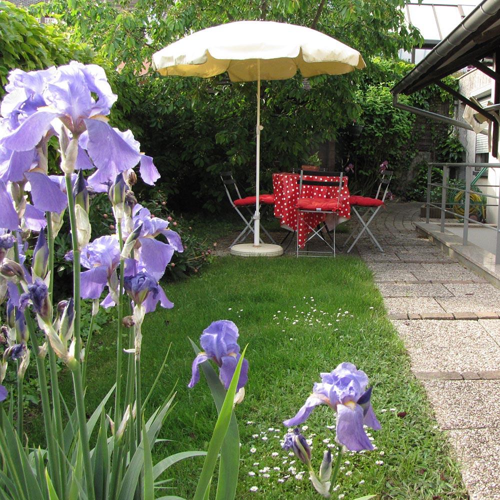 Le côté jardin du studio, proche de la piscine.