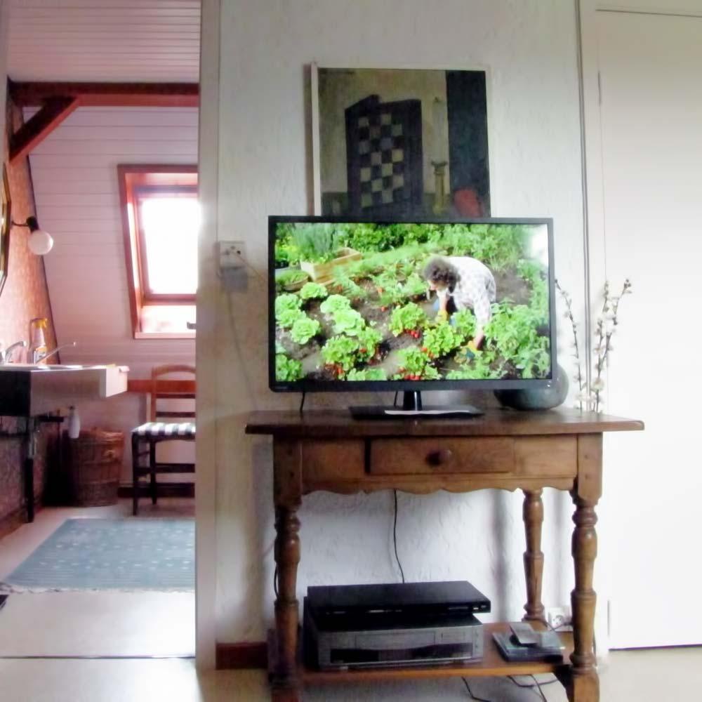 La TV du salon et son lecteur DVD.